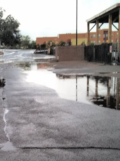 Stormwater pools near dirt shoulder. Photo: Joe Craig