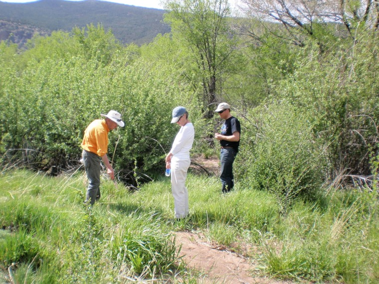 Jim Brooks explores the restored plant community at Tijeras Creek with visitors.
